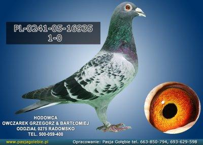 PL-0241-05-16935