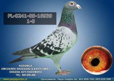 PL-0241-05-16939