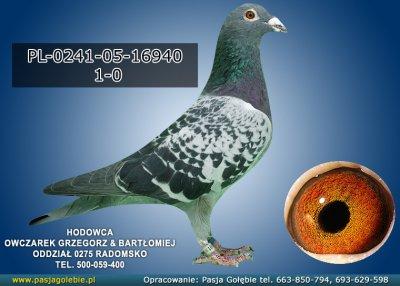 PL-0241-05-16940