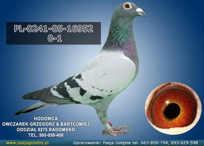 PL-0241-05-16952