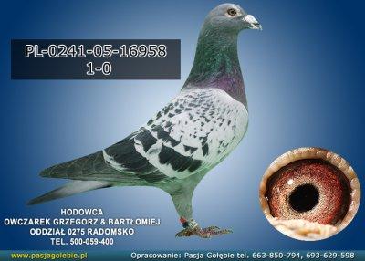 PL-0241-05-16958