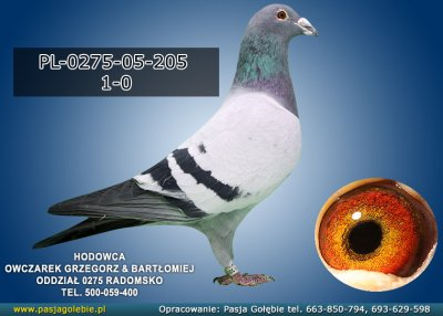 PL-0275-05-205
