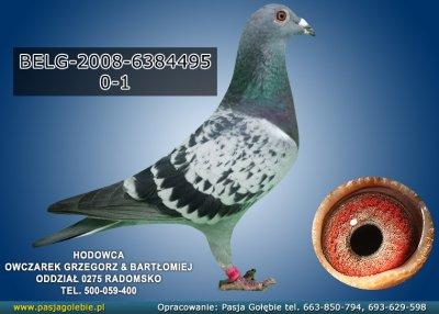 BELG-2008-6384495
