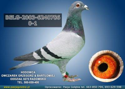 z-BELG-2003-6240786