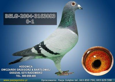 z-BELG-2004-3163083