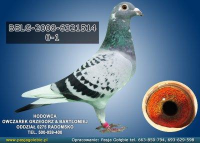 Z-BELG-2008-6321514