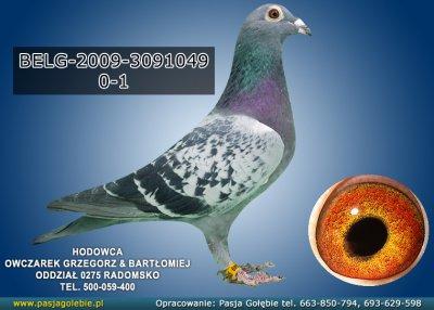 z-BELG-2009-3091049