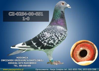 z-CZ-0254-00-651