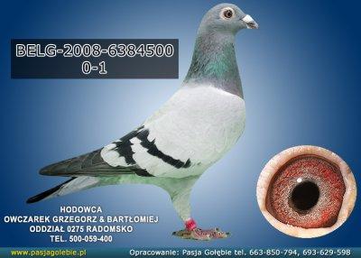 BELG-2008-6384500