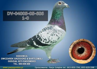 z-DV-04005-05-686