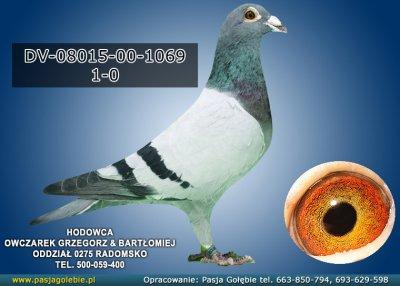 z-DV-08015-00-1069