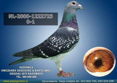 Z-NL-2000-1222723