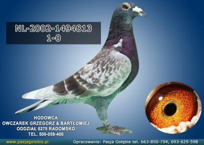 z-NL-2002-1494813