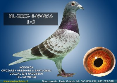 z-NL-2002-1494814