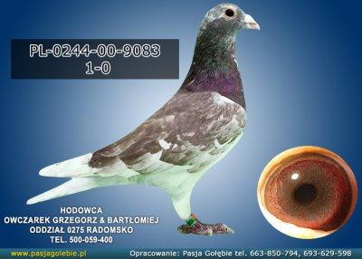 z-PL-0244-00-9083
