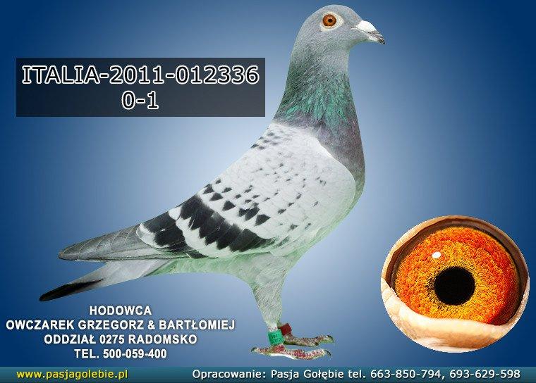 IT-2011-012336