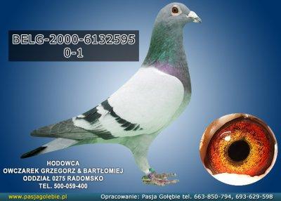 BELG-2000-6132595