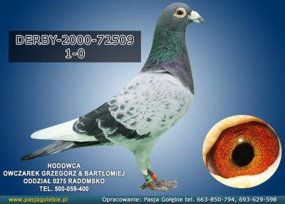 DERBY-2000-72509