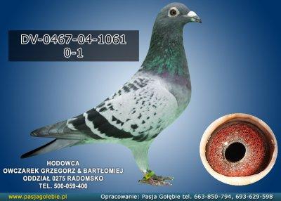 DV-0467-04-1061