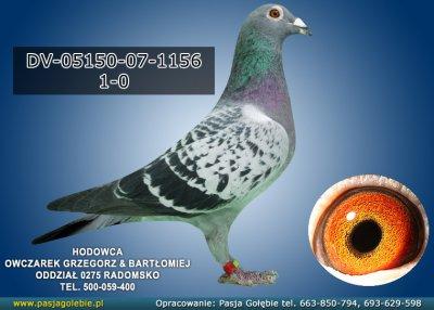 DV-05150-07-1156