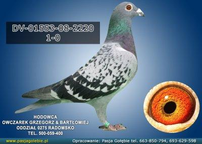 DV-01553-08-2220