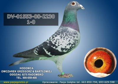 DV-01553-08-2230