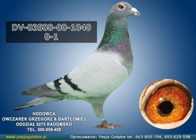 DV-03508-00-1040