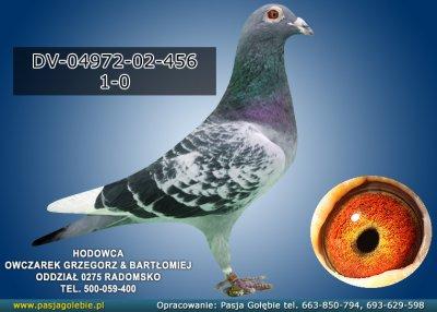 DV-04972-02-456
