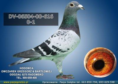 DV-06504-00-616