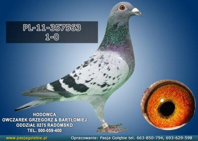PL-11-357563