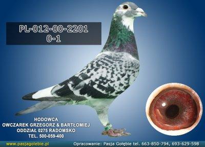 PL-012-00-2201