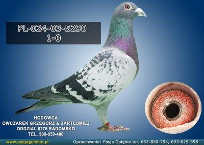 PL-024-03-5290