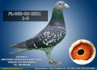 PL-060-00-2881