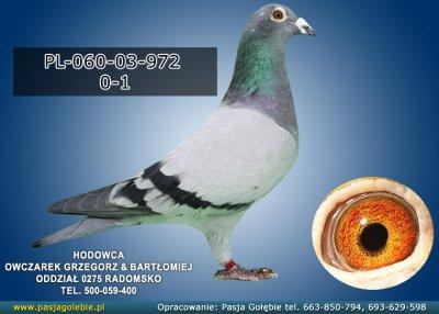 PL-060-03-972