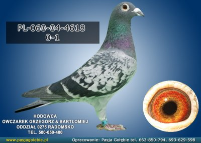 PL-060-04-4618