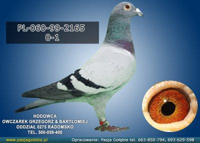 PL-060-99-2165