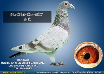 PL-061-04-107