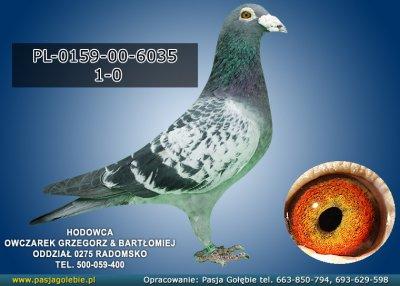 PL-0159-00-6035
