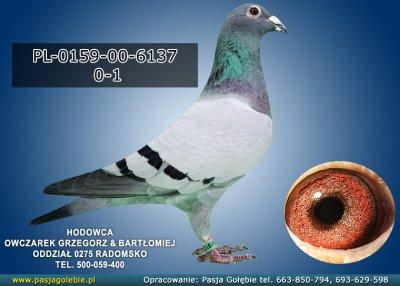PL-0159-00-6137