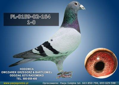 PL-0159-02-164