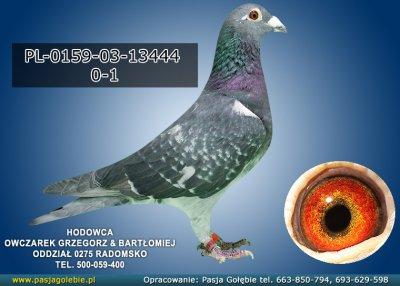 PL-0159-03-13444