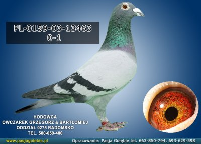 PL-0159-03-13463