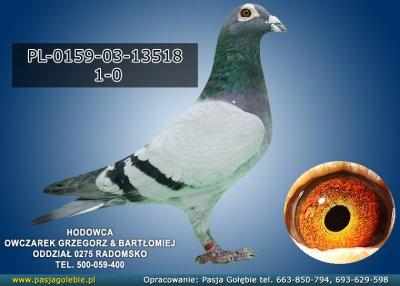 PL-0159-03-13518