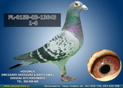 PL-0159-03-13643