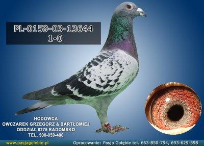 PL-0159-03-13644