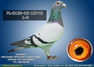 PL-0159-03-13743