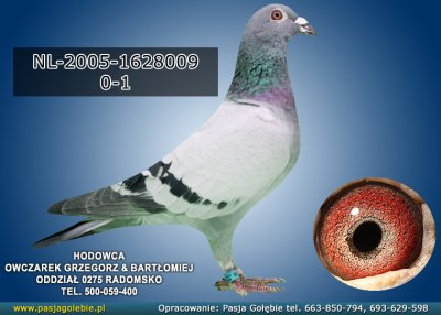 NL-2005-1628009