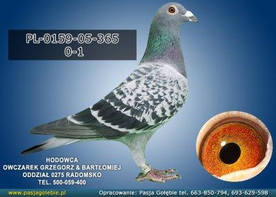 PL-0159-05-365