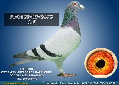PL-0159-05-3673