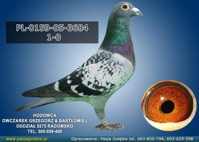 PL-0159-05-3684